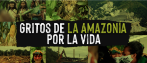 Gritos de la Amazonía por la vida