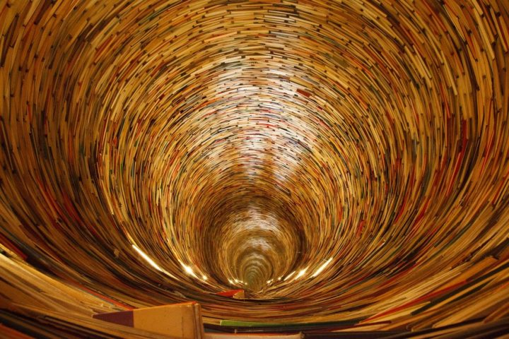 Gemeingut öffentliche Bibliotheken - Privatisierung der Medienauswahl und beschaffung an der ZLB mit Vertragsablauf beenden!