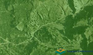 Ελληνικό Δίκτυο ΦΙΛΟΙ της ΦΥΣΗΣ: Να μην ακυρωθούν οι ήδη κυρωμένοι δασικοί χάρτες