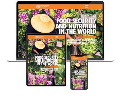 L'ONU ha pubblicato il rapporto sullo stato della sicurezza alimentare nel mondo