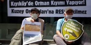 Gözaltına alınan Kuzey Ormanları Savunması aktivistleri serbest bırakıldı
