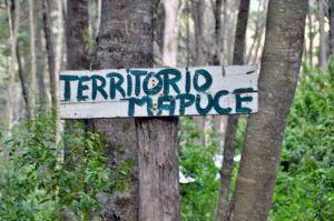 Contra el terricidio del capital ¡viva el control territorial de las comunidades!