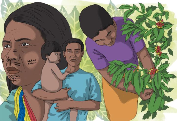 Indígenas del Eje Cafetero sufrimos amenazas y asesinatos