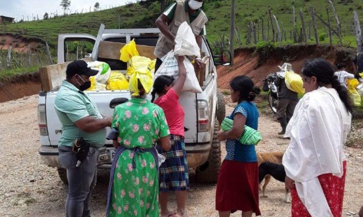 """La pandemia en Honduras sirve para hacer """"proselitismo político"""", denuncian grupos indígenas y garífunas"""