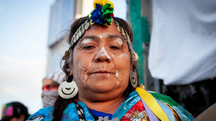 Mujer mapuche - Paula Acunzo