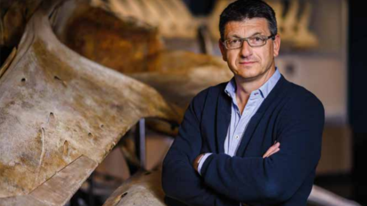 Coronaviren – wenn die Natur plötzlich zurückschlägt - Interview mit Prof. Dr. Matthias Glaubrecht