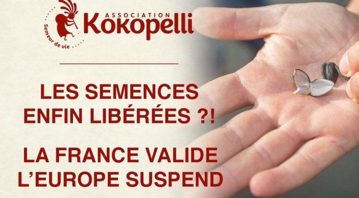 L'Europa si oppone alla libera vendita di sementi ai coltivatori non professionisti