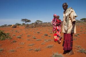 L'OMS dichiara l'Africa libera dal virus della polio selvatica