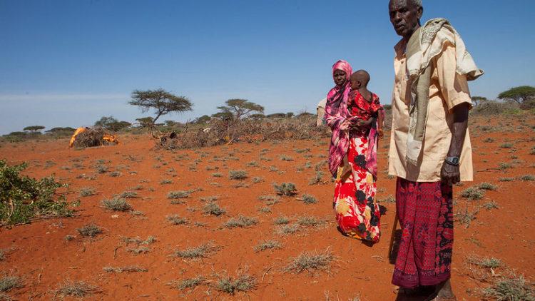 L'OMS déclare que l'Afrique est exempte du virus de polio sauvage