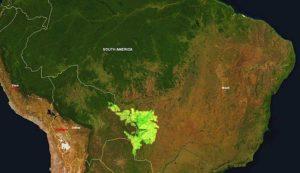 Brasile: Pantanal in fiamme