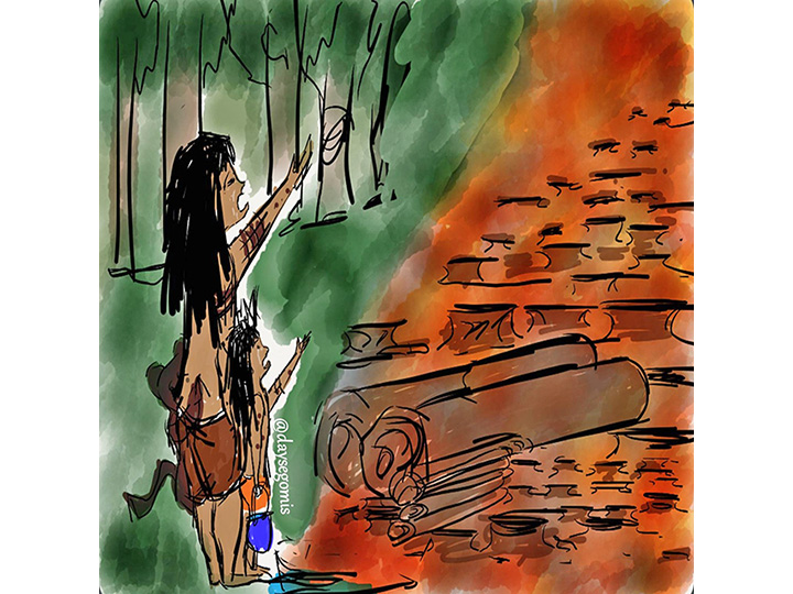 ¡La Amazonia pide ayuda!
