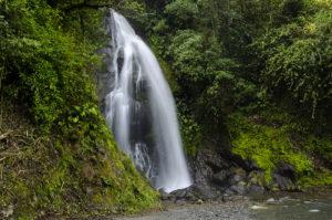 Defensa a la vida: Las comunidades de Intag consiguen acción de protección en su defensa por el agua y la biodiversidad