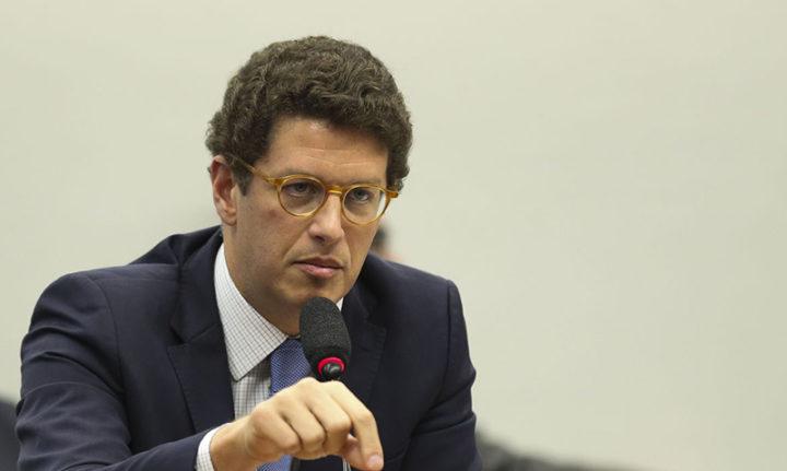 """""""Megaboiada"""": em Conama aparelhado, Salles revoga normas ambientais para agronegócio"""