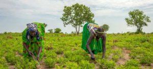 La covid ampliará la brecha de pobreza entre mujeres y hombres