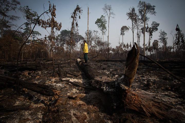 Qual a relação do agronegócio com as queimadas?
