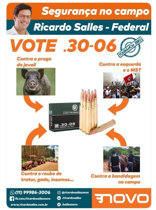 Brasile: storia naturale della distruzione