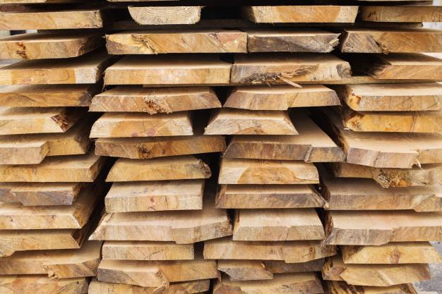 Καμερούν: προς απαγόρευση εξαγωγής κορμών δέντρων