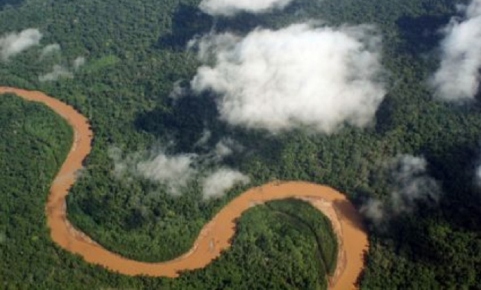 Stato di emergenza in Bolivia. Gli incendi boschivi minacciano l'habitat indigeno