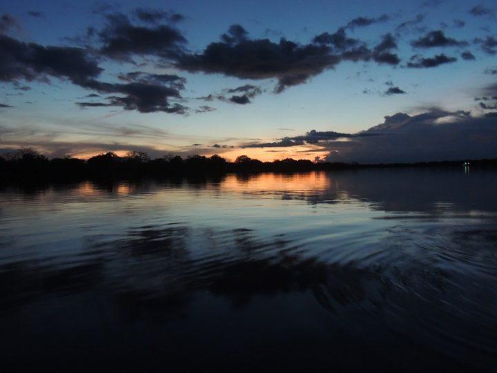 Preoccupante perdita della biomassa amazzonica