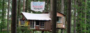 Dannenröder Forst: Zum x-ten Mal