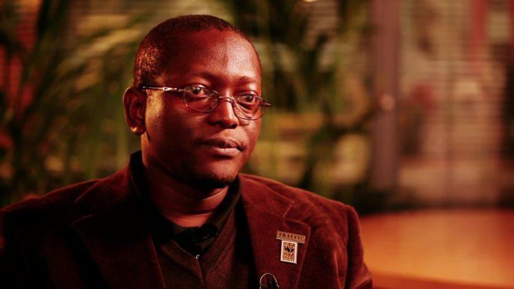 Denis Mahonghol, Directeur du Programme Afrique Centrale de TRAFFIC