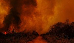 O pantanal avermelhado, chora