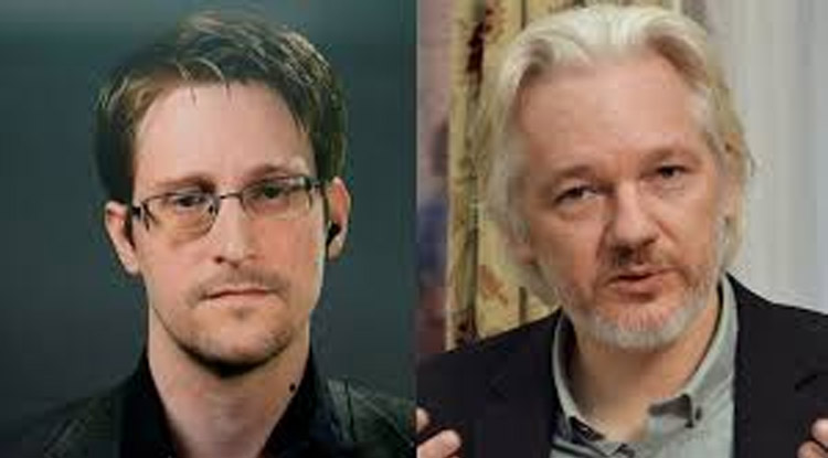 Tulsi Gabbard fordert Amnestie für Assange und Snowden
