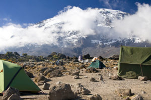 Kilimanjaro Threatened by Fires Which Shaped It