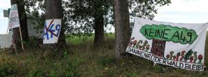 Dannenröder Wald: 1 Monat Widerstand gegen den Weiterbau der A49