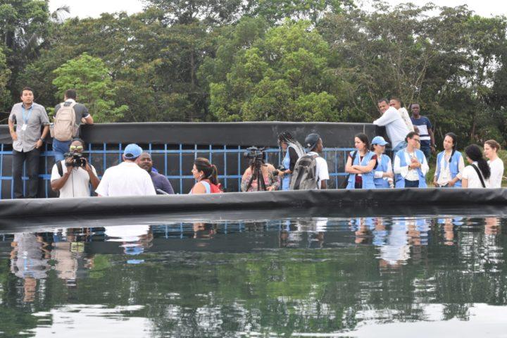 Colombia: Piscicultura y Aguas de Paz, dos proyectos de excombatientes de las FARC