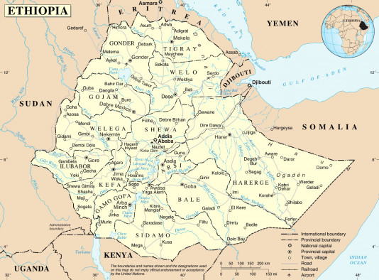 Statement from a Coalition of Pan African Organizations on the War in Ethiopia