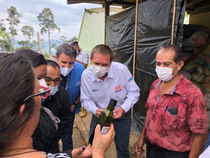 Economía circular y apoyo privado para la reincorporación en Tolima