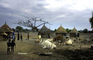 Giornata internazionale dei diritti umani (10 dicembre). La protezione dei civili nei conflitti è insufficiente