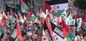 US-Proklamation fördert Konflikt um die Westsahara