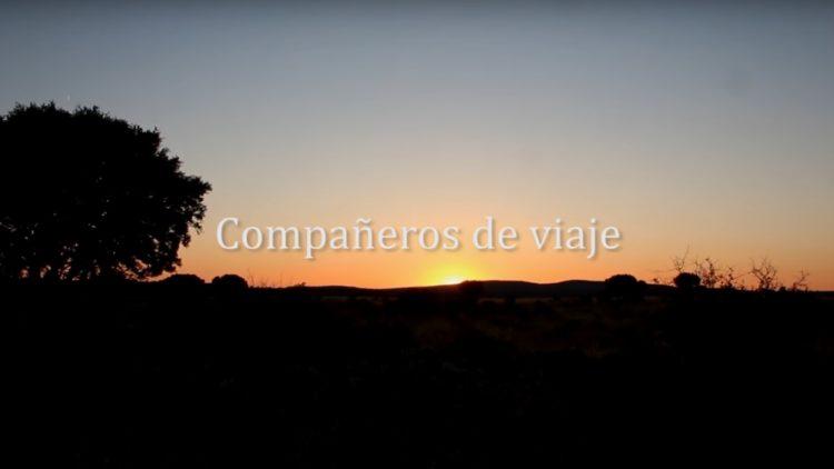 El Festival de Cine y Derechos Humanos de Madrid selecciona documentales promovidos por Pressenza