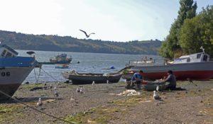 CONDEPP:  Las dos caras en sostenibilidad del sector pesquero chileno