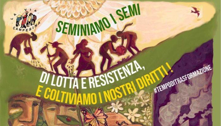 OGM in Italia? Il governo tenta il colpo di mano