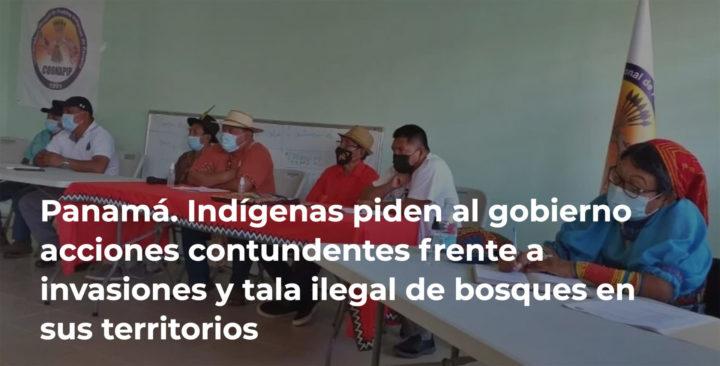 Panamá: Indígenas reclaman acciones contundentes frente a invasiones y tala ilegal de bosques en sus territorios
