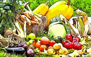 Nuovi OGM, divieti di riutilizzo e scambio di semi in Italia. Stop della Camera