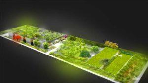 Museu do Pontal comemora doações para o plantio de mais de 30 mil mudas para seus jardins