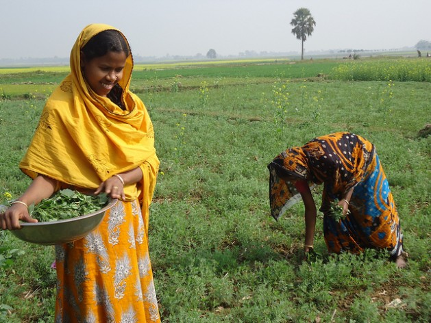 Why Transforming Our Food Systems Is a Feminist Issue