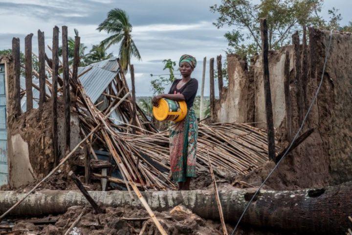 """Cambiamento climatico: 18 scienziati allertano sulla """"sesta estinzione di massa"""""""