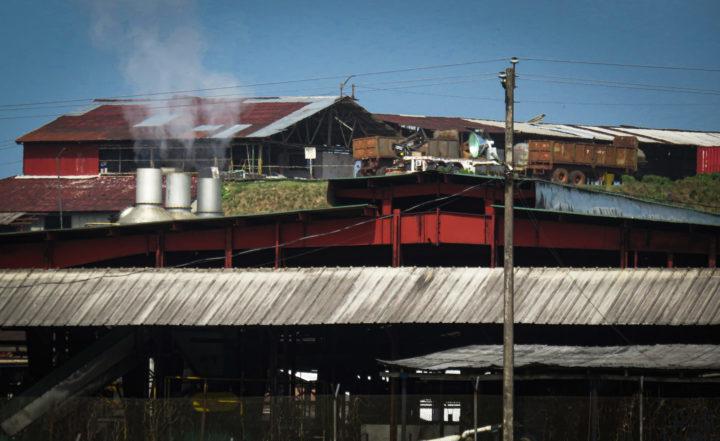 Liberia, indagine sui disastri ambientali dell'industria della gomma naturale