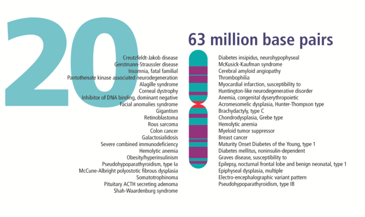 Complicated Legacies: The Human Genome at 20