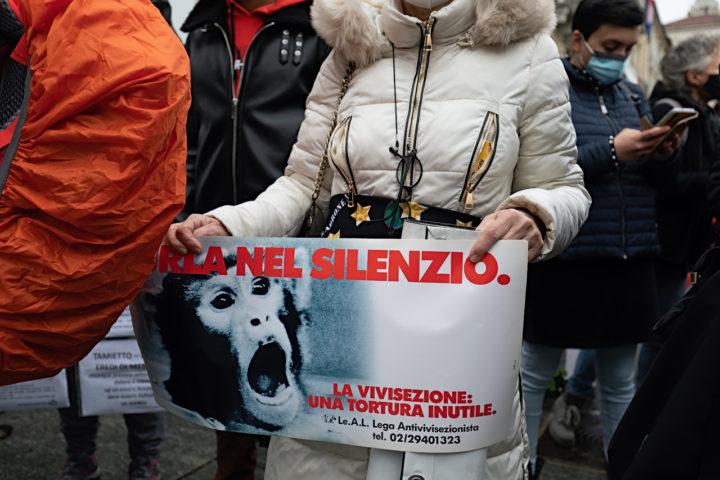 Manifestazione Animalista 7