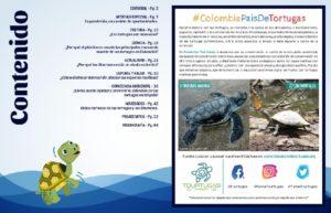 Colombia: ¿Cómo disfrutar del mar sin afectar las especies marinas?