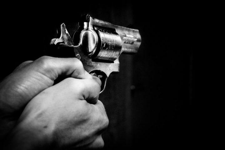 """Beretta (Opal): """"Licenze armi troppo facili, dubbi su attività sportive"""""""