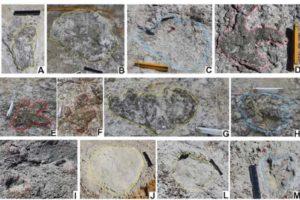 Encuentran en Portugal yacimiento con huellas de dinosaurios