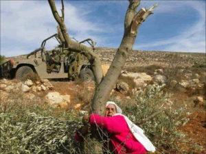 """30 Marzo Giornata della Terra: """"Dove va la Palestina.. Ma chi fermerà Israele?"""""""
