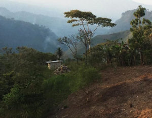 Denuncian ataque armado e incendio contra Chalchihuitán